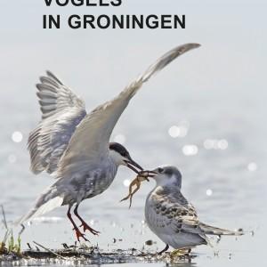 omslag Vogels in Groningen.indd