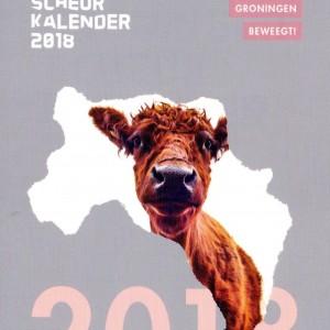 171102_groningerscheurkalender